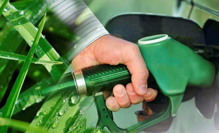 bioetanol, el oxigenante del futuro