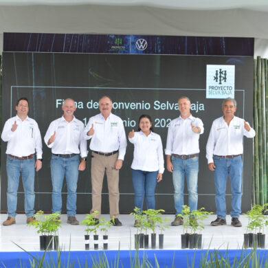Proyecto Selva Baja Volkswagen México